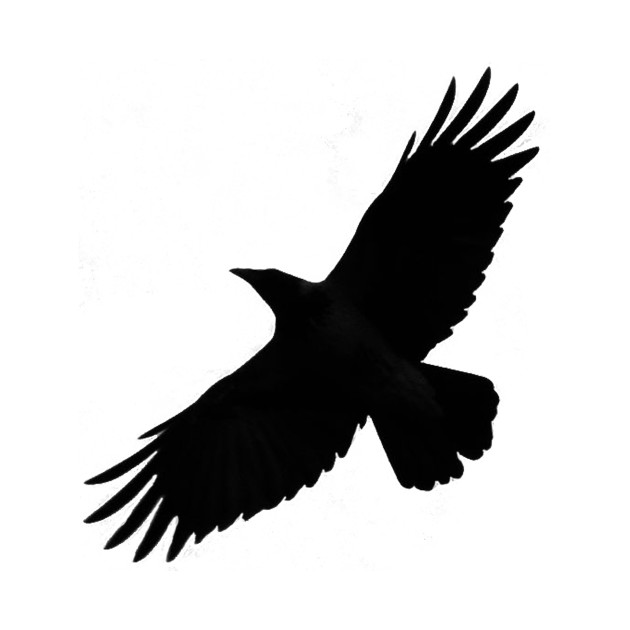 630x630 Crow Raven Bird Silhouette Fly