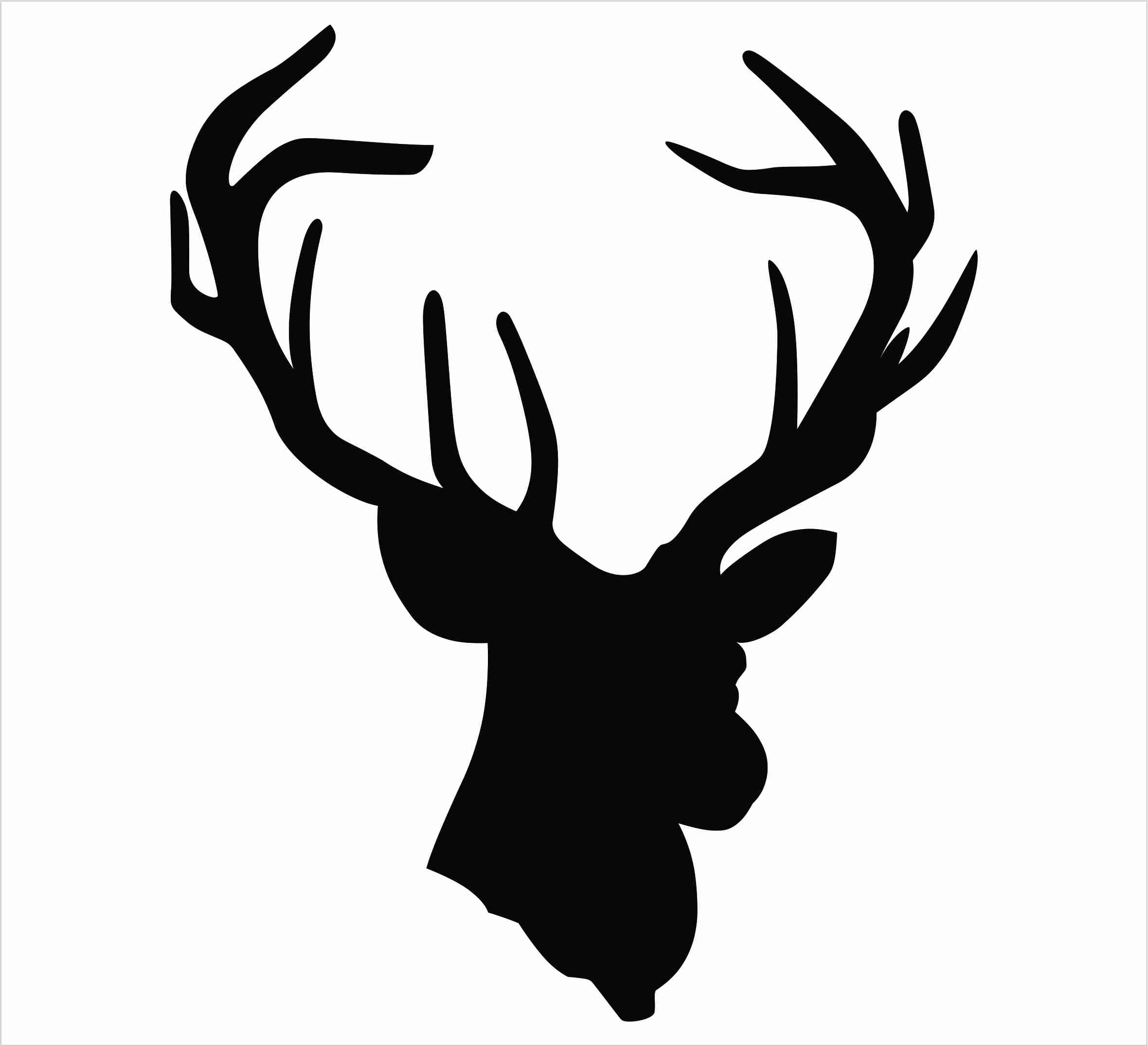 2360x2151 Antler Clipart Deer Head Pencil And In Color Entrancing Antlers