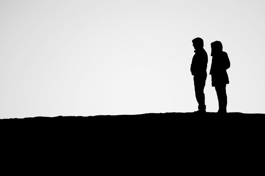 900x599 Desert Silhouettes Iii By Netsrotj