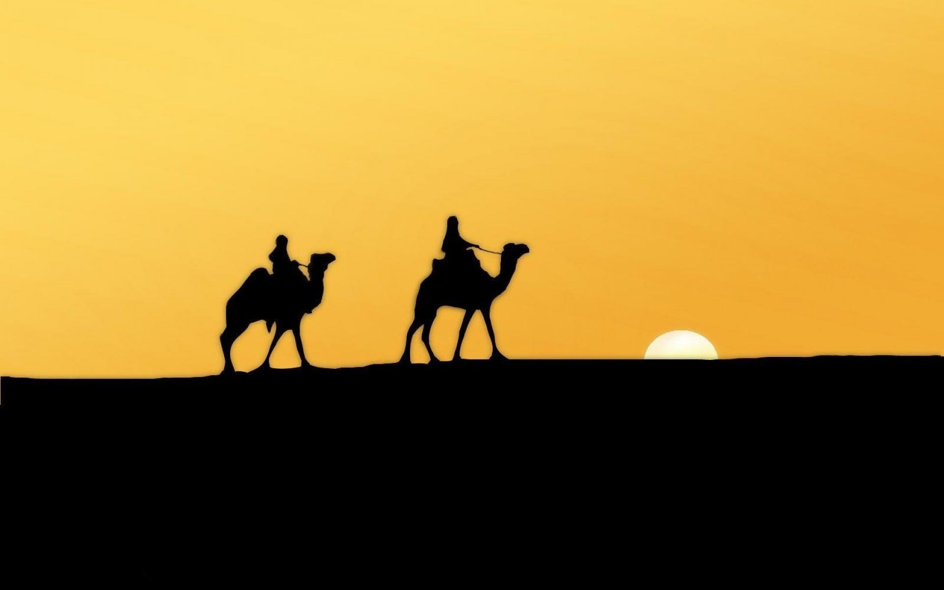 1920x1200 Desert Sahara Wallpaper (9001)