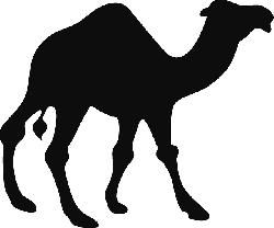 250x208 Silhouette, Camel, Various, Walking, Animal, Desert