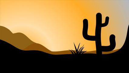 426x240 Search Photos San Pedro Cactus
