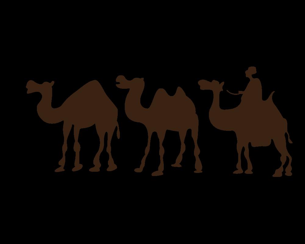 1000x800 Camel Desert Drawing Clip Art