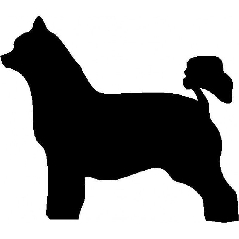 800x800 Dog Breed Silhouette Wall Hanging Magnetic Memo Chinese Crested