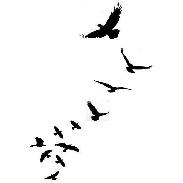 600x600 Drawn Dove Flight Silhouette
