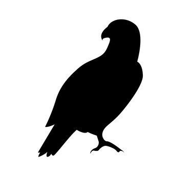 340x340 Free Silhouettes Dove, Icon, Item