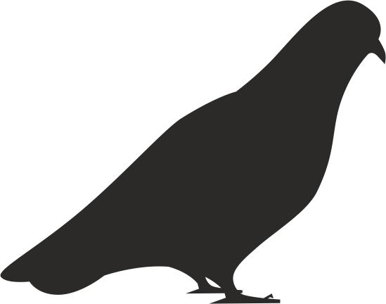 549x432 Bird Dove Silhouette Vector Coreldraw Vector (.cdr) File Free