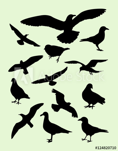 393x500 Seagulls, Dove, Pigeon, Crow Silhouette. Good Use For Symbol, Logo