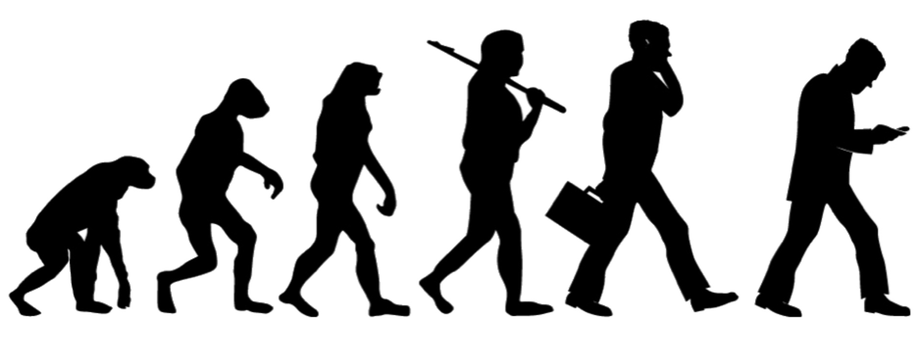 1880x740 Evolution.jpg