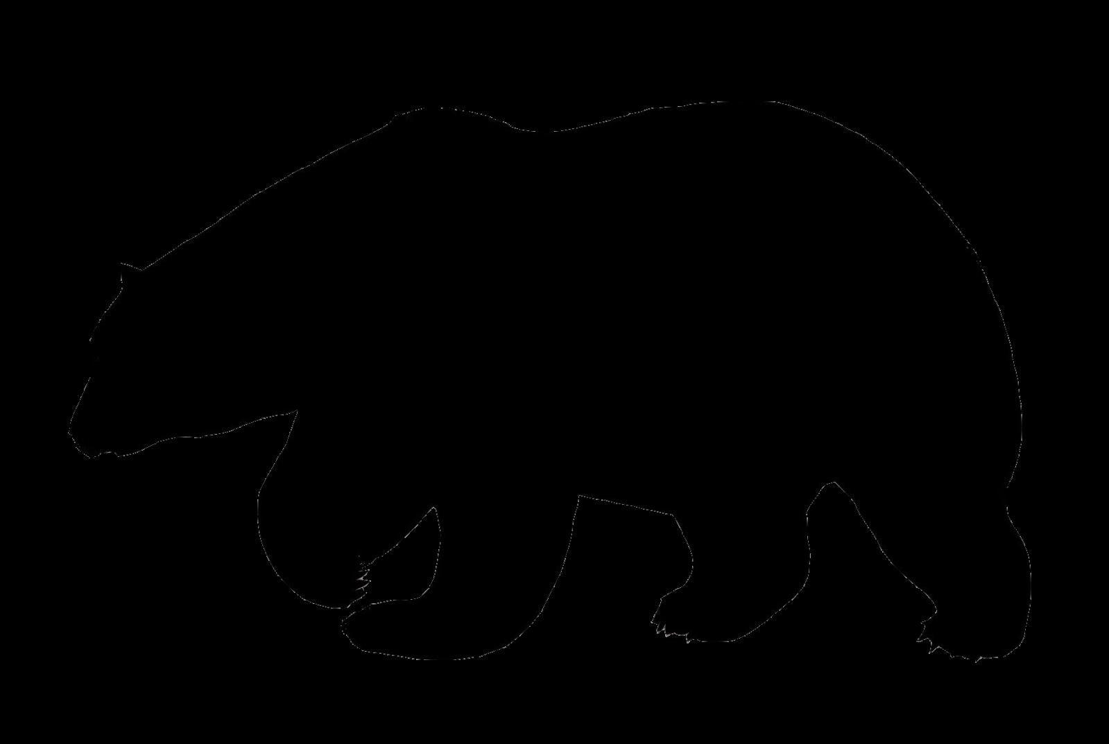 1599x1073 Polar Bear Flock Amp Applique Polar Bear, Bears