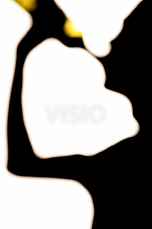 499x750 Silhouette Of Man Drinking Wine From A Bottle