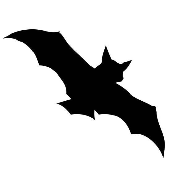 570x570 Bat Birds Halloween Stencil Profile 5 Stencils Styles Svg Dwg
