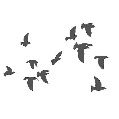 400x400 Bird Flocks 3d Model