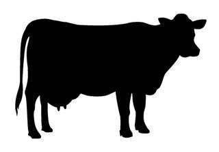 320x223 Cow Silhouette 1 Decal Sticker