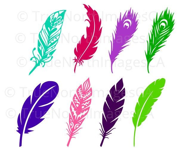 641x514 Feather Svg Feather Silhouette Feather Vector Feather