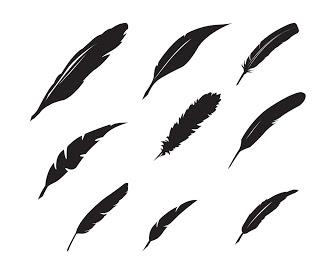 320x267 Free Feather Svg. Click The Image To Download Cliquez Pour