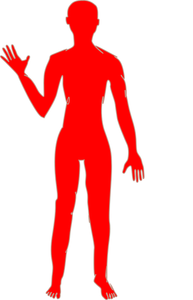 384x598 Female Body One Clip Art