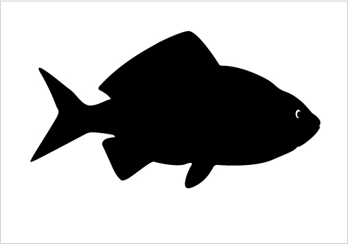 501x352 Fish Silhouette Clip Art Fishing Clipart Silhouette 14