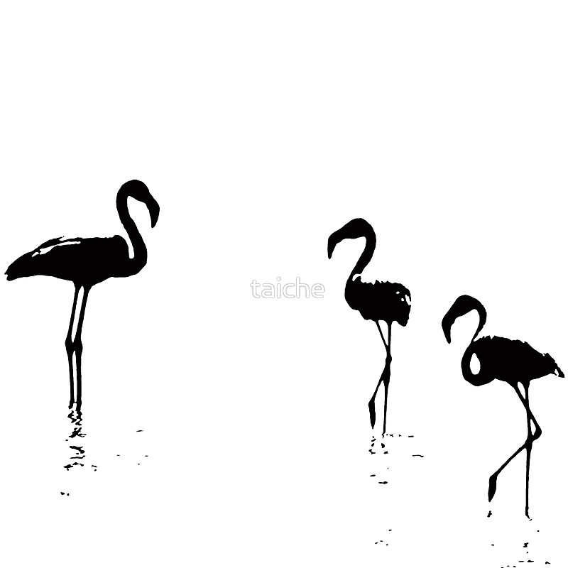800x800 We Are The Three Flamingos Silhouette In Black Tote Bags By
