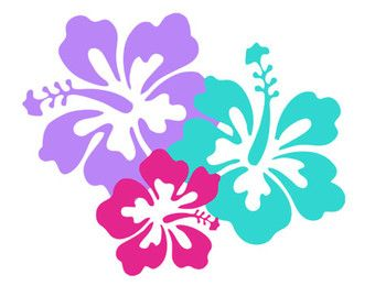 340x270 Hibiscus Silhouette Svg Dxf File Instant Download Silhouette Cameo