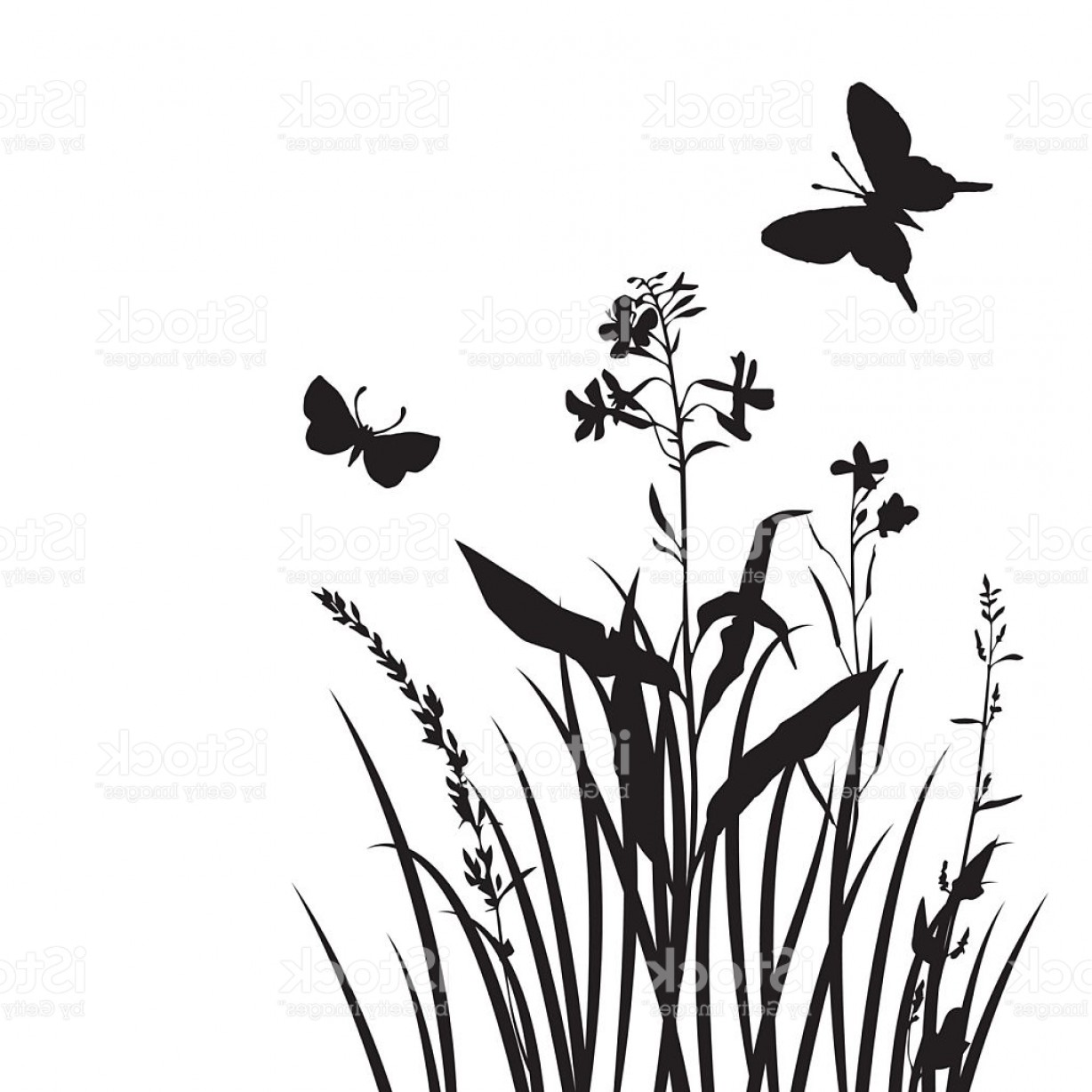 1228x1228 Butter Fly And Flower Vector Black And White Createmepink
