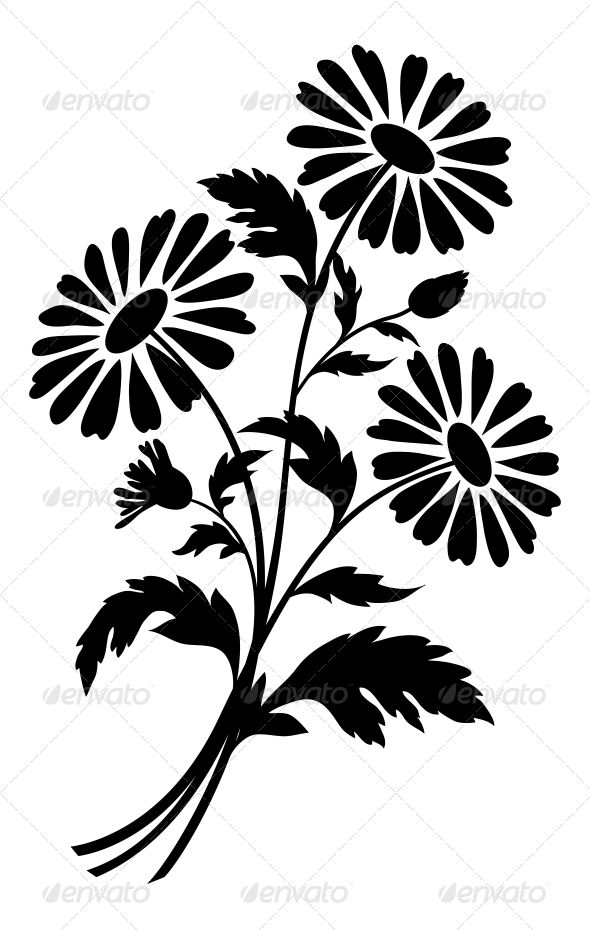 590x930 Chamomile Flowers, Silhouettes Flower Silhouette, Silhouettes