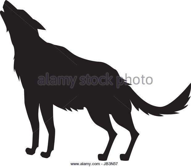 619x540 Wolf Predator Black Silhouette Animal Stock Photos Amp Wolf Predator