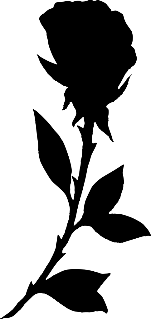 484x1024 17 Rose Silhouette (Png Transparent)