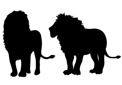 500x350 The King Of Wild Lion Silhouette Vector Free Download Silhouette