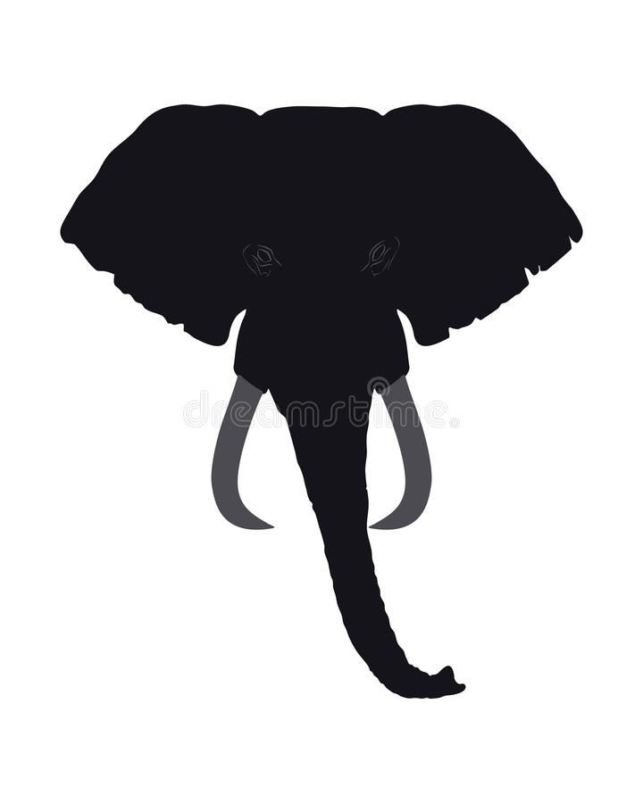 720x900 Elephant Silhouette Front How To Format Cover Letter