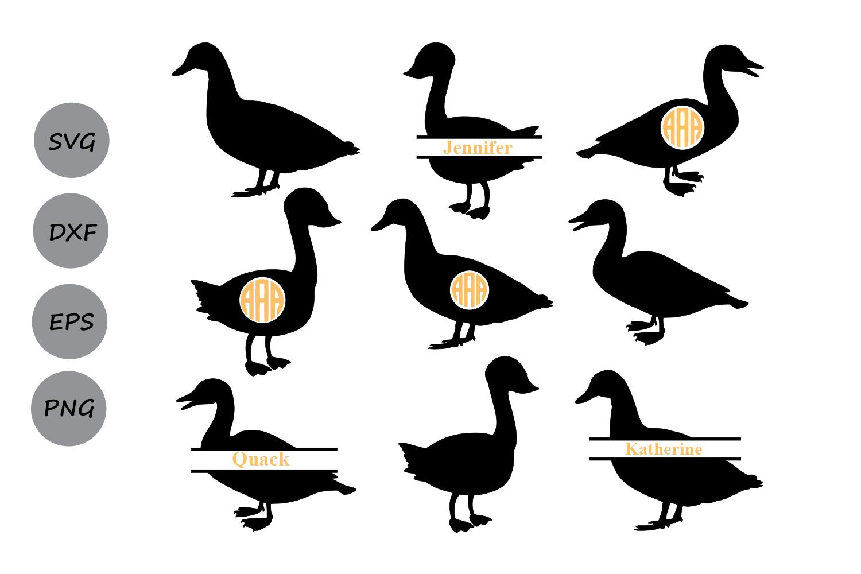 1500x1000 Duck Svg Cut File, Duck Monogram Frames Design Bundles