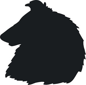 300x296 Rough Collie Head Dog Decal Sticker Graphic Car Van Vinyl