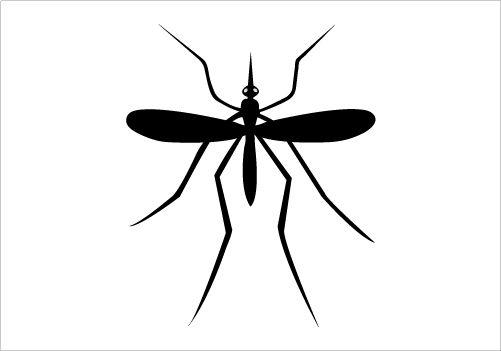 501x351 Mosquito Silhouette Graphics Silhouette Clip Art