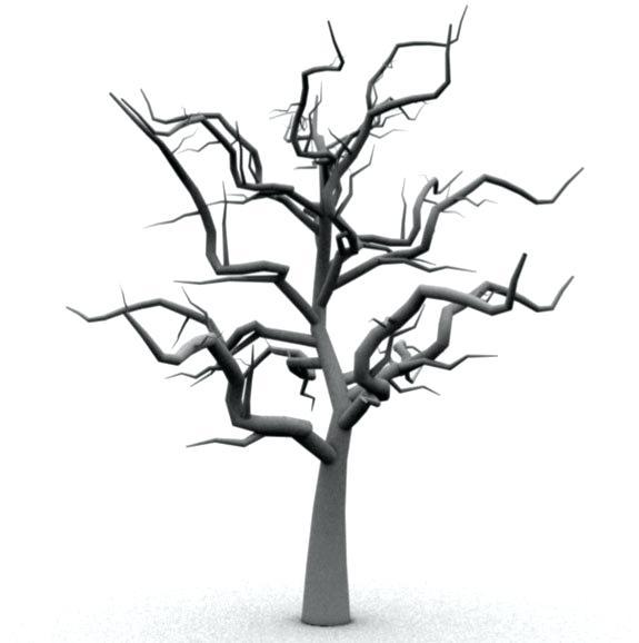 575x578 Scary Tree Model Scary Tree Dry Scary Halloween Tree Clipart