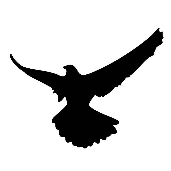 It's just a photo of Intrepid Printable Hawk Silhouette for Window
