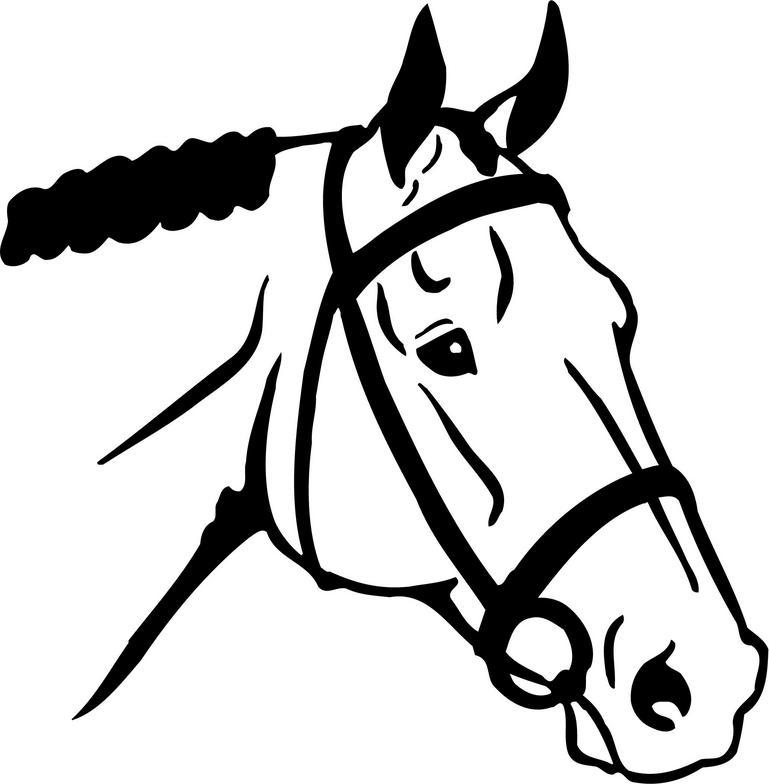 769x784 Free Horse Head Clipart Image