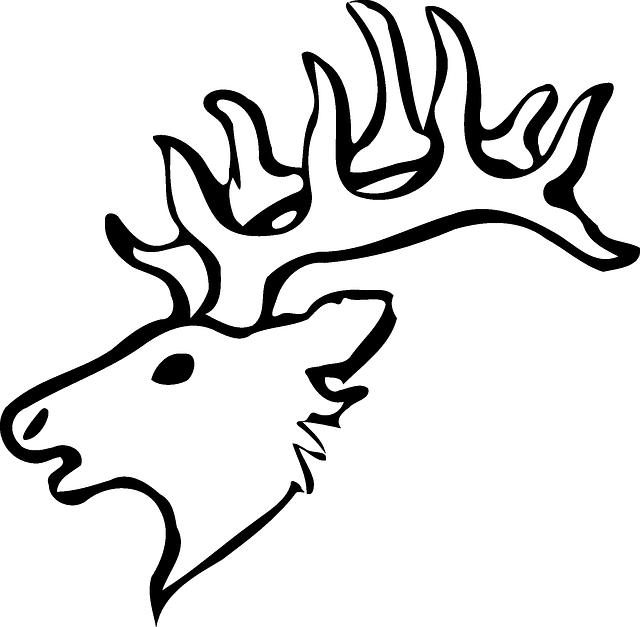640x627 Head, Silhouette, Face, Skull, Cartoon, Deer, Heads