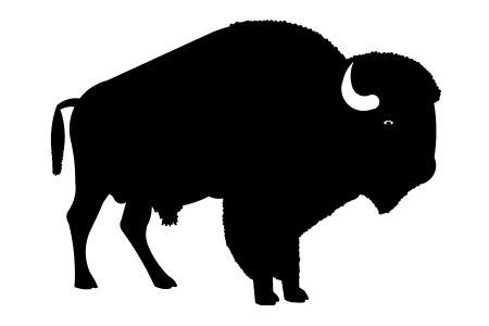 450x300 Bison Clipart Buffalo Head