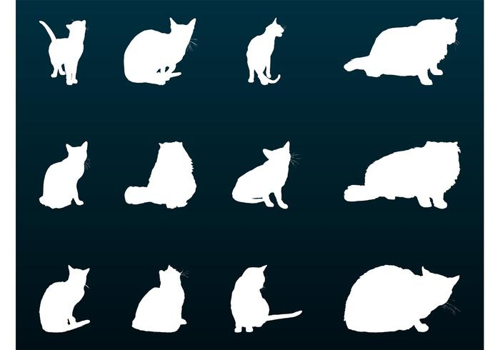 700x490 House Cats Silhouettes