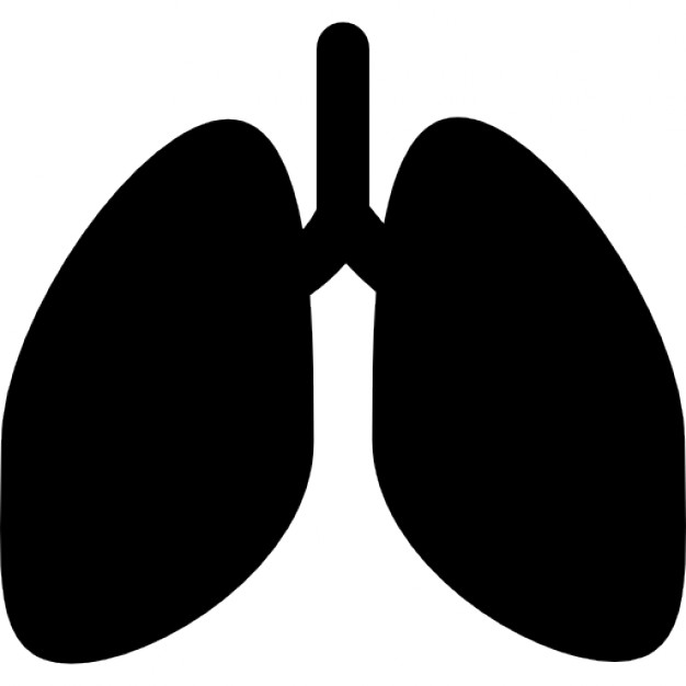 626x626 Lungs Silhouette Icons Free Download