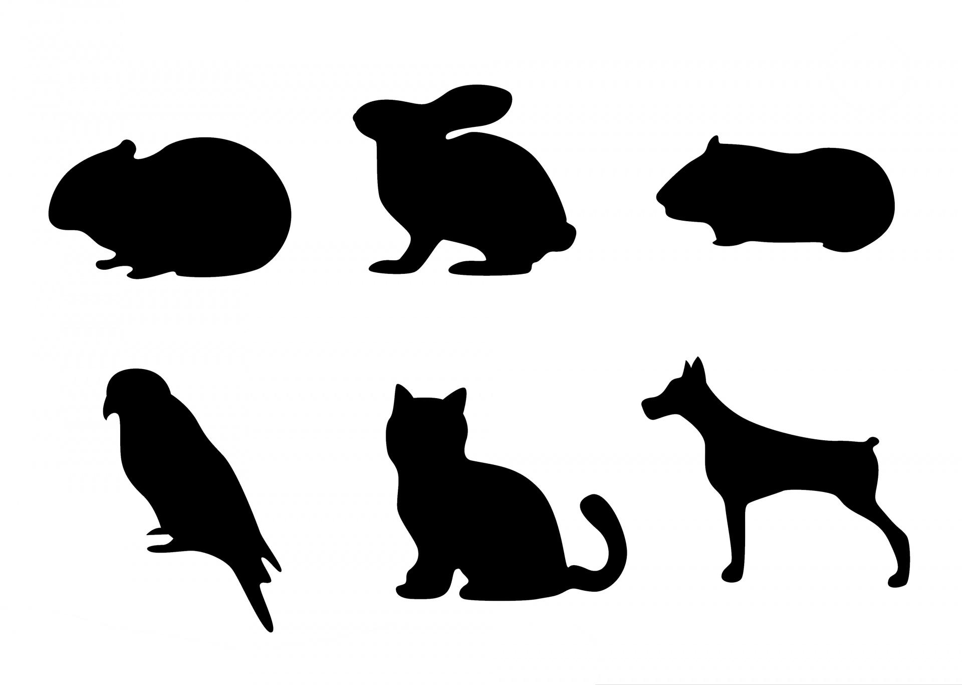 1920x1366 Pet Silhouette Icons Free Stock Photo