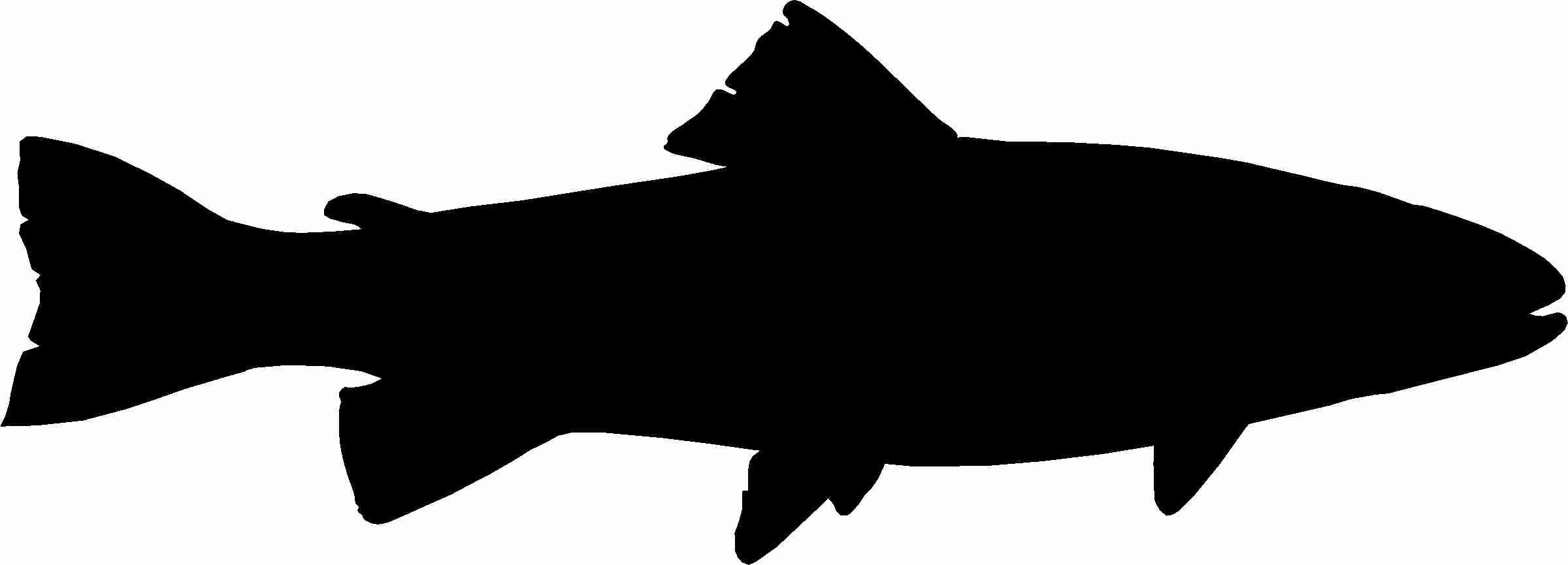 2400x866 Trout Silhouette Icons Png Free And Downloads Brilliant