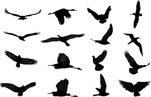 600x387 Vector Birds Silhouettes Free Vector In Adobe Illustrator Ai ( Ai
