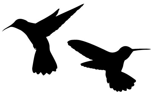500x350 Sweet Hummingbird Silhouette Vector Free Download Silhouette Clip