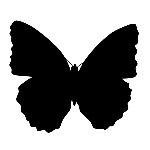 640x640 Butterfly Animal Silhouette Free Illustrations