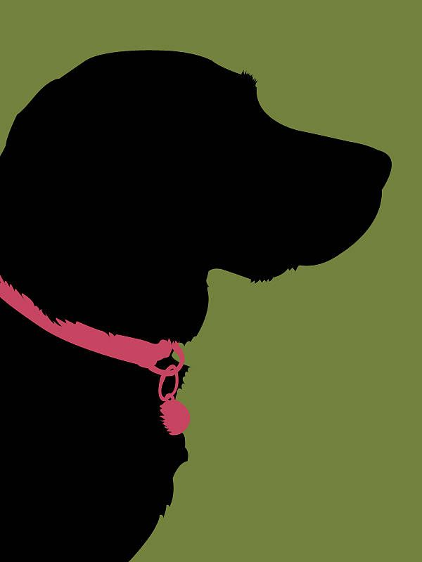 600x800 Personalised Pet Silhouette Print By Cat's Print Shop