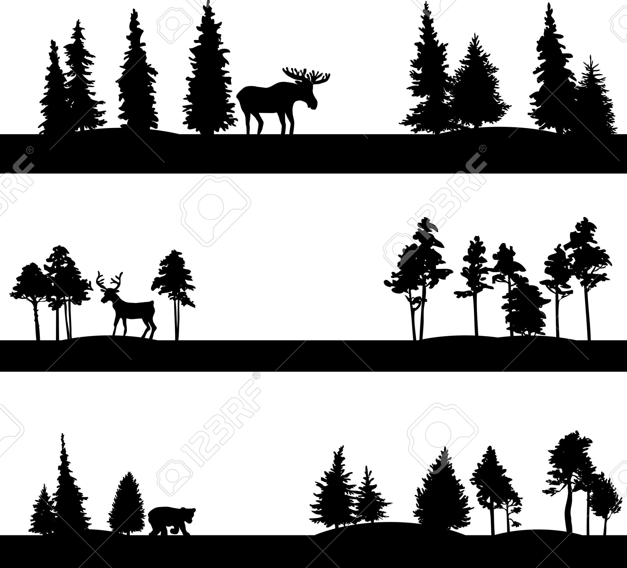2153x1948 Set Of Different Landscapes With Coniferous Trees And Wild Animals