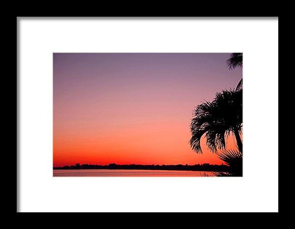 600x467 Twilight Metamorphosis Framed Print By Michiale Schneider