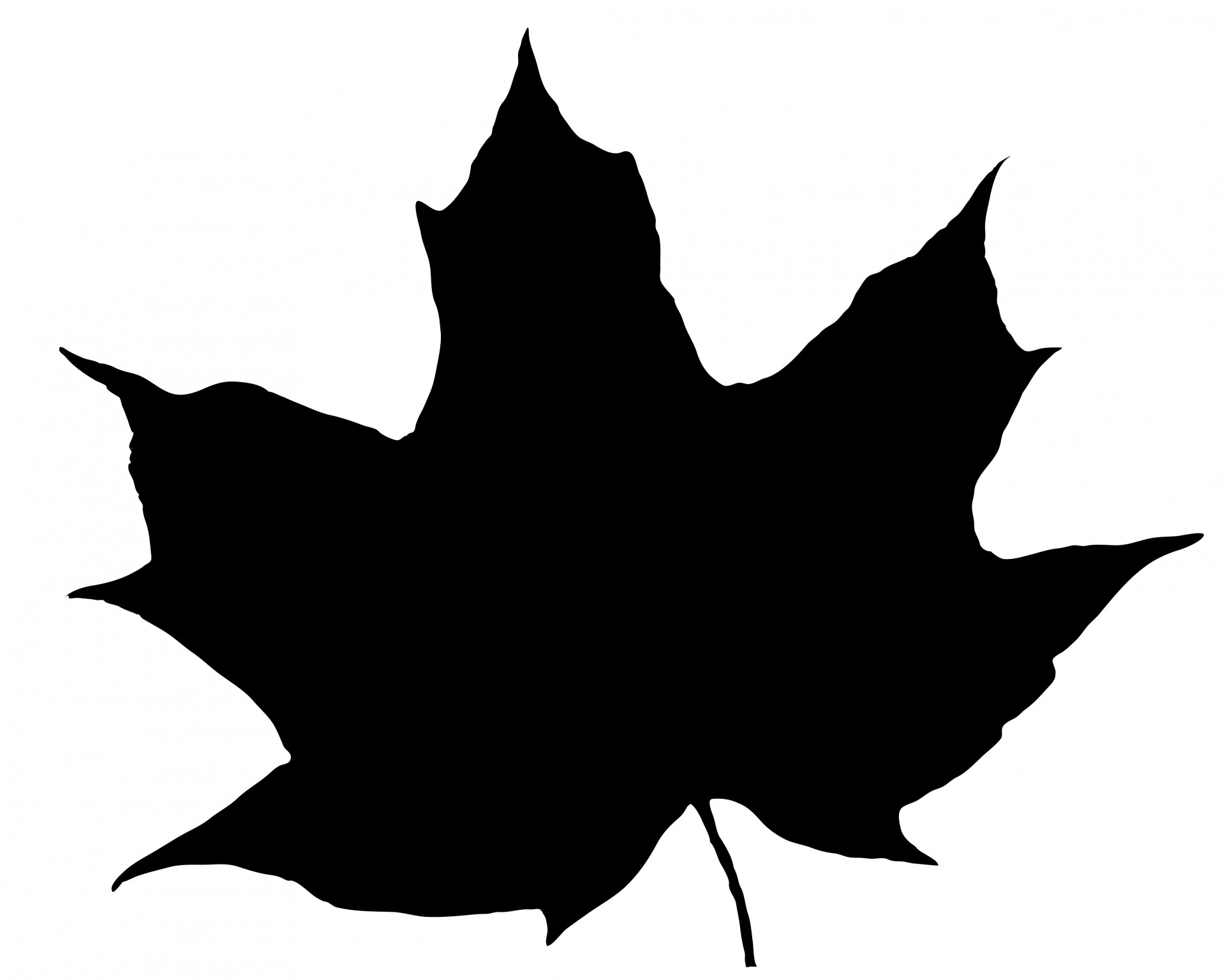 1920x1536 Leaf Silhouette Free Stock Photo