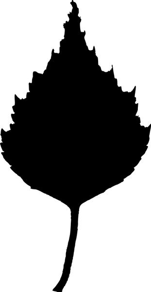 311x600 Birch Leaf Silhouette Free Vector In Open Office Drawing Svg